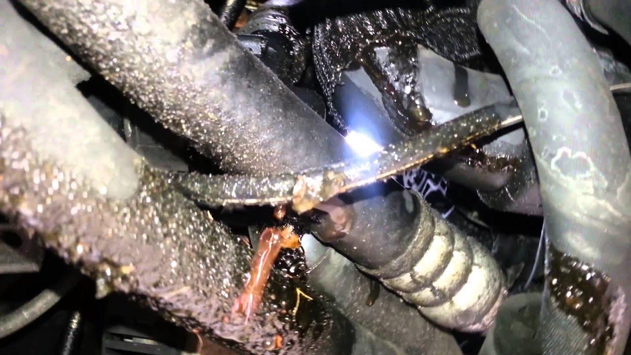 99 Passat B5 Coolant Leak Youtube