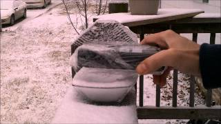 2/13/2012 ☢ Alert ! 110 CPM in the SNOW - St. Louis, Missouri ☢ AVOID EXPOSURE ☢