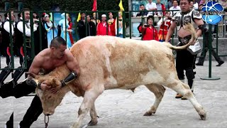 Tough man survives bull attacks and makes it back off!!!