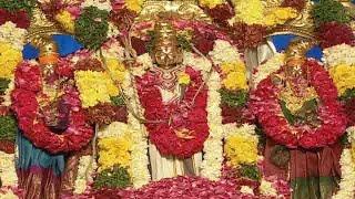 Dwaraka Tirumala Srinivasa Kalyana Mahotsavam at Bhakthi TV Koti Deepothsavam 2015