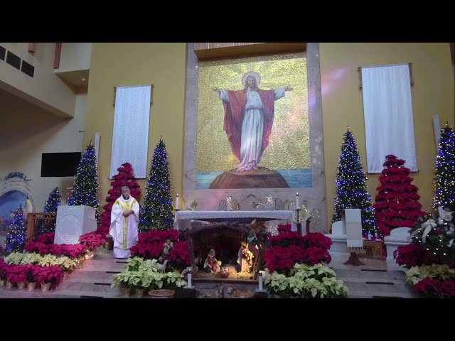 Christmas Day homily, 2020