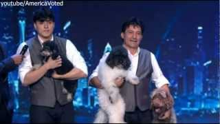 the olate dogs americas got talent semi finals 2012 agt