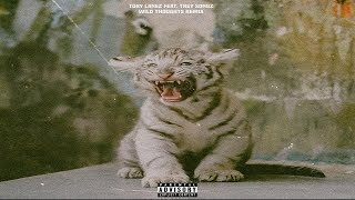 Tory Lanez - Wild Thoughts (Feat. Trey Songz)