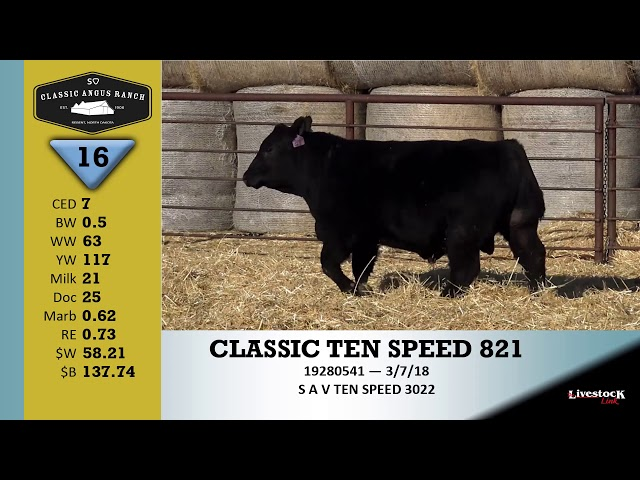 Classic Angus Ranch Lot 16