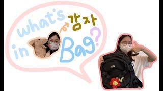 What's in Potato(감자) bag?
