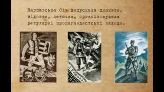 Карпатська Україна. Альтернативні уроки історії (2011)