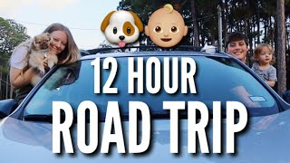 12 Hour Road Trip with a Toddler & Puppy | Teen Mom Vlog
