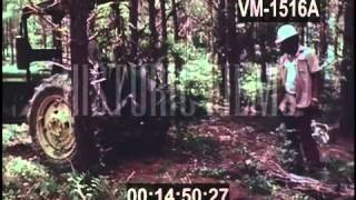 SUPER TREES 1976