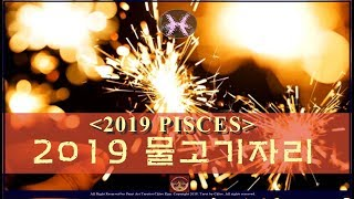 물고기자리 2019년 운세 ( 2019 PISCES tarot for general reading)
