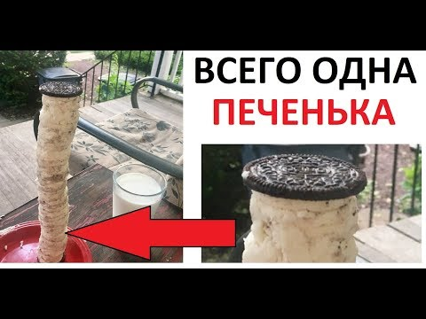 Лютые приколы. ГИГАНТСКАЯ ПЕЧЕНЬКААаааа !!!1