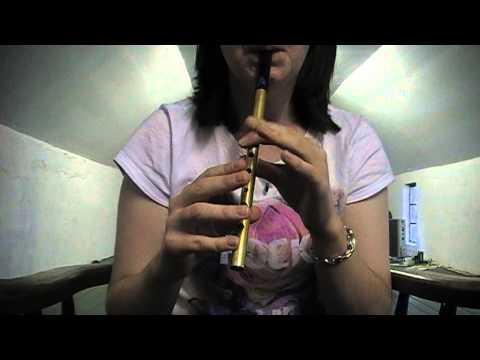 Irish Tin Whistle: The Old Grey Goose   Jig