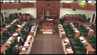Sitting of the House of Representatives - February 19, 2019