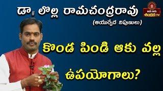కొండ పిండి ఆకు వల్ల ఉపయోగాలు?    Mana Mokkalu Mana Vaidyam Ep-33    Dr.Lolla Ramji   