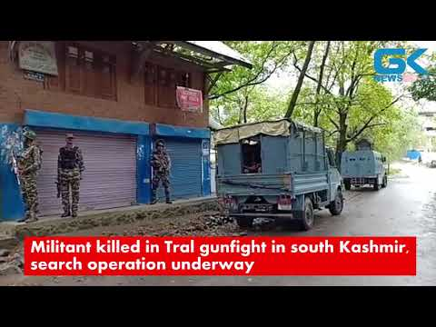 Militant Killed In Tral Gunfight In South Kashmir, Search Operation Underway