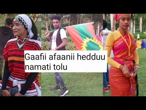 Gaafi Heddu Namati Tolu😂 2019