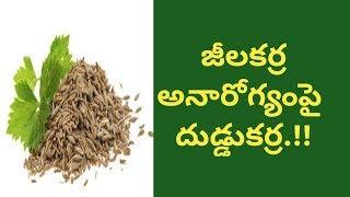 Health Benefits of Cumin Seeds | Health Tips In Telugu | Manandari Health