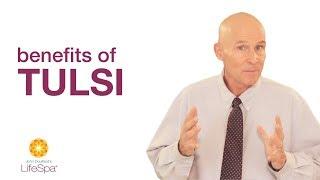 Benefits of Tulsi | John Douillard's LifeSpa