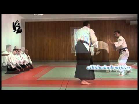 Instruktorski aikido seminar | 30. Jun 2012.g.
