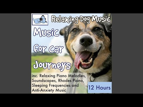 Resting Frequency Dog Music to Stop Whining
