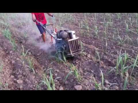 Power Tiller use for Sugarcane ploughing in west Uttar Pradesh