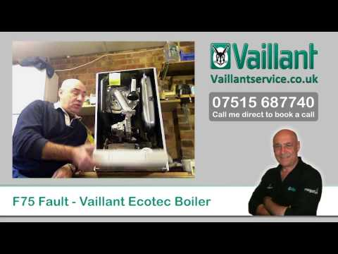 Vaillant Ecotec F75 Fault Code