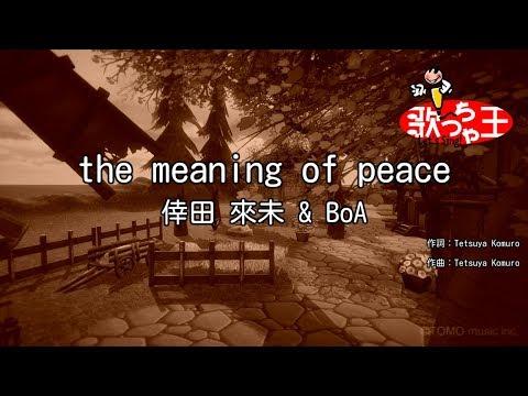 【カラオケ】the Meaning Of Peace/倖田 來未 & BoA
