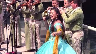El Mariachi de mi Tierra- EN VIVO-Gabriela Sepúlveda y Mariachi Estelar