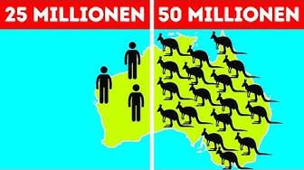 50 Fakten über Australien, die alle Vorurteile zerstreuen