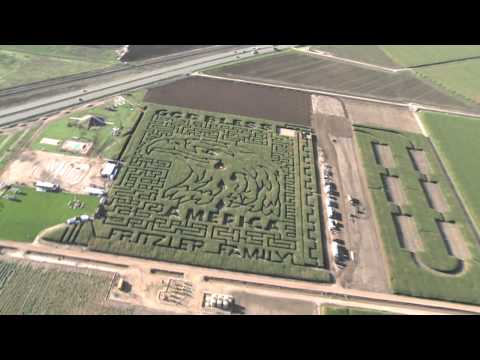 Fritzler Corn Maze opening on time despite rainfall