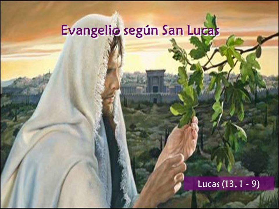 Resultado de imagen de higuera seca en la biblia lucas13 1-9