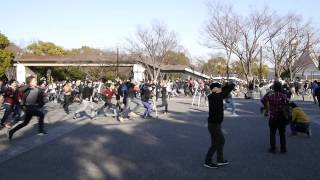 BiS「レリビ」代々木公園野外ステージ 2014/1/11