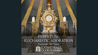 Perpetual (24/7) Eucharistic Adoration prayer mission