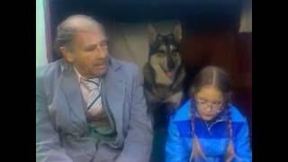 Маленький Бродяга S01E23 (The Littlest Hobo RUS)