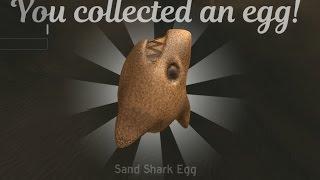 Sand Shark Egg ROBLOX Egg Hunt 2017 Tutorial