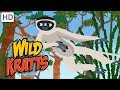 Wild Kratts - Leaping Lemurs Part 2: Special Moves and Scented Clues