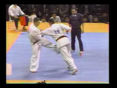 kyokushin karate グラウベ・フェイトーザvsニコラス・ペタス ド迫力 ...