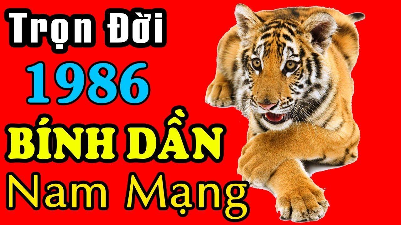 Download Xem Bói Tử Vi Trọn Đời Tuổi Bính Dần 1986 Nam Mạng