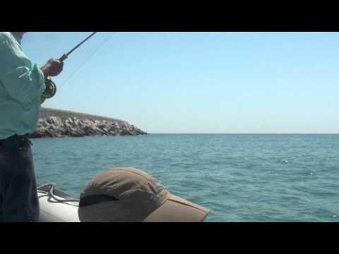 Salt water fly fishing in Barcelona (2011)