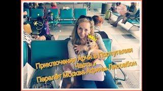 Приключения Арчи | Собака в самолете | Перелет с собакой в Португалию(, 2017-06-05T06:34:31.000Z)