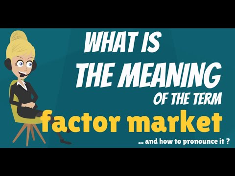 What is FACTOR MARKET? What does FACTOR MARKET mean? FACTOR MARKET meaning, definition & explanation