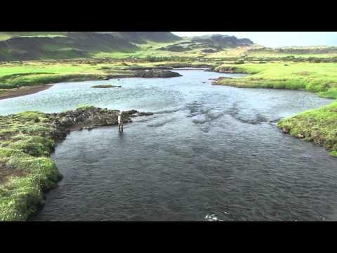 WhereWiseMenFish -Salmon Fishing In Iceland