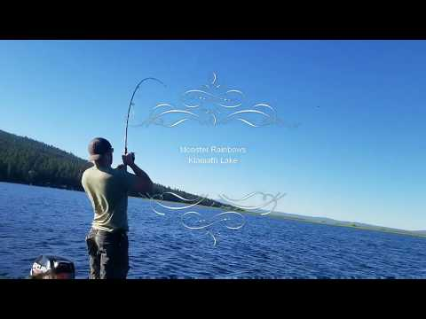 Monster Rainbow Trout Klamath Lake Oregon Summer 2018