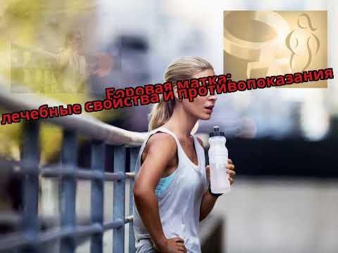 Боровая матка: лечебные свойства и противопоказания