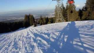 Швейцария. Спуск на санках с горы Пилатус/Switzerland.Sledging from Pilatus.