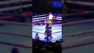 Torrie fight night 2017