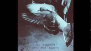 "Vic Chesnutt - ""Everything I Say"""