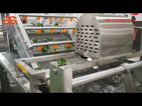 How To Wash Lettuce/ Vegetable Cleaning Machine