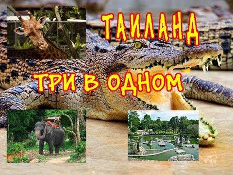 ЛУЧШИЕ экскурсии Таиланда в Паттайе  Цены в феврале. THAILAND.PATTAYA