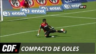 Palestino 2 - 0 Deportes Temuco  | 11° Fecha | Torneo Apertura 2016 | CDF