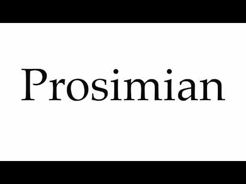 How to Pronounce Prosimian